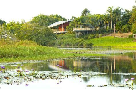 mackay botanical gardens mackay botanic gardens mackay regional botanic garden
