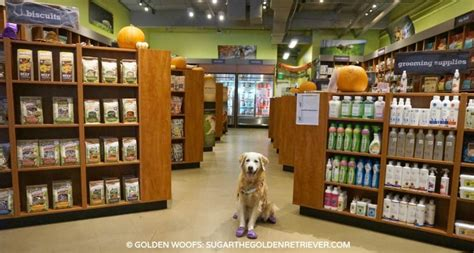 shopping at kriser s natural pet store golden woofs