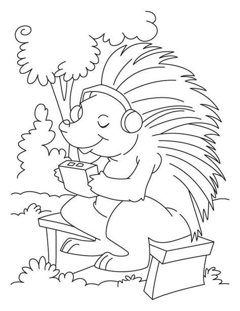 porcupine coloring pages coloring home