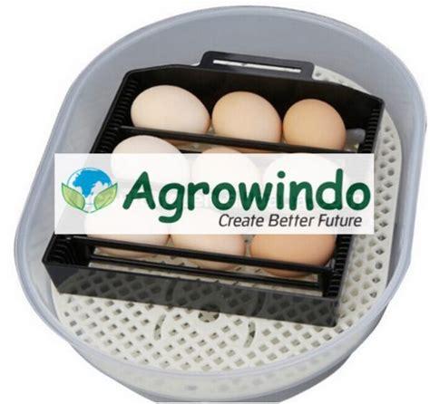 Harga Mesin Tetas Telur Ayam Kalkun mesin tetas telur 12 butir otomatis agr tt12 agrowindo