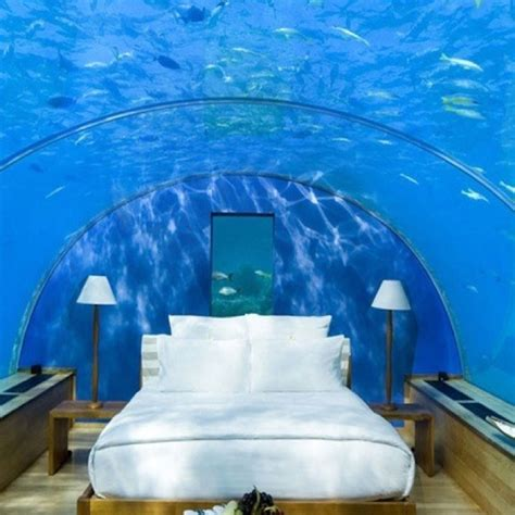 water beds and stuff 15 best images about water beds on pinterest wake up