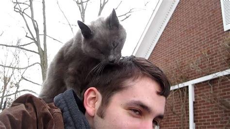 my licks my my cat my hair