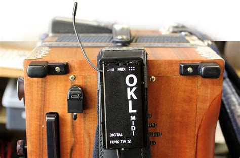 Harmonika Qidi 10 midi harmonikas k 228 rntnerland