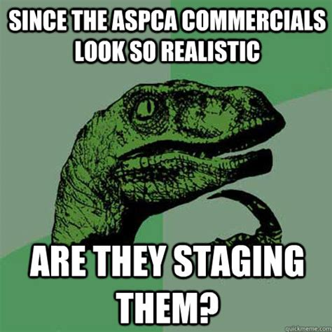 Aspca Meme - since the aspca commercials look so realistic are they staging them philosoraptor quickmeme