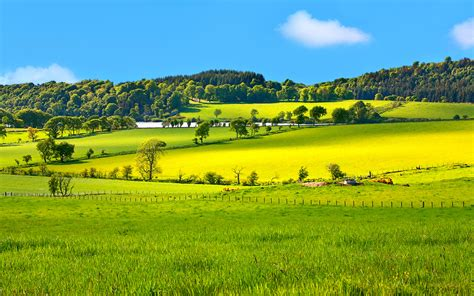 beautiful nature landscape in spring wallpapers and images beautiful spring landscape in scotland wallpaper hd 10974