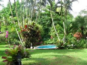 Tropical Gardens Of by Tropical Gardens Pictures Home Design Inside