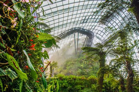 gardens   bay  futuristic garden  singapore