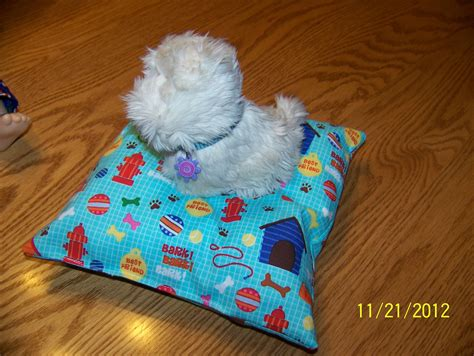 cute girl dog beds cute girl dog beds design house photos