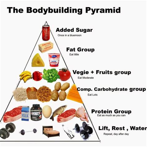 carbohydrates testosterone 1000 ideas about bodybuilding nutrition on
