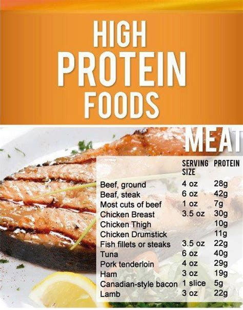The Best Diet Foods High In Protein by High Protein Foods Supporting Weight Loss Ideas