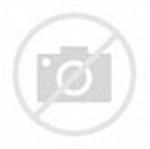 Karate Animated Graphic