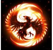 Dragonfantasy