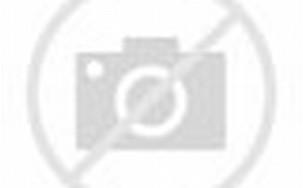 Anime White Tiger Lightning
