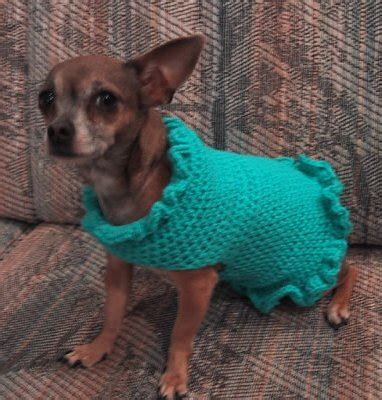 free crochet pattern for a dog coat crochet n more newsletter