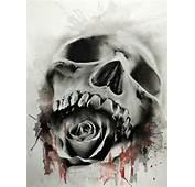 Fine Art Skulls By Glen PreeceWELCOME TO A WORLD OF SKULLS