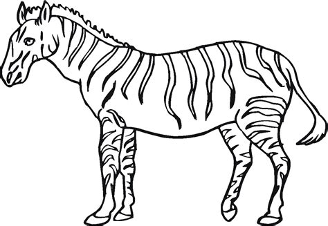 Zebra Coloring Pages To Print free printable zebra coloring pages for