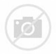 Cassidy Goodson, 14-Year-Old, Murders Her Newborn Baby: Cops