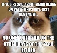 Animal Memes  Valentines Day Grumpy Cat Funny