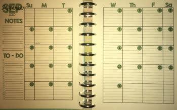 printable monthly calendar planner  page spread  goldstargnatuk