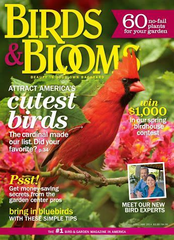 backyard birding magazine 17 best images about birds and blooms on