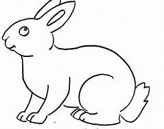gambar mewarnai kelinci gambar kelinci untuk mewarnai anak anak untuk