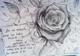 dibujos a lápiz de rosas (13)