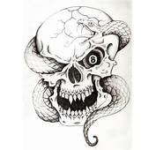 Skull And Snake Tattoo By HighlanderPhill