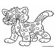 Jaguar Coloring Pages  Free Printable Kids