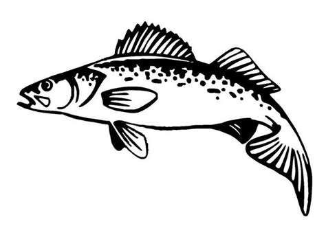 the gallery for gt walleye fish clip art