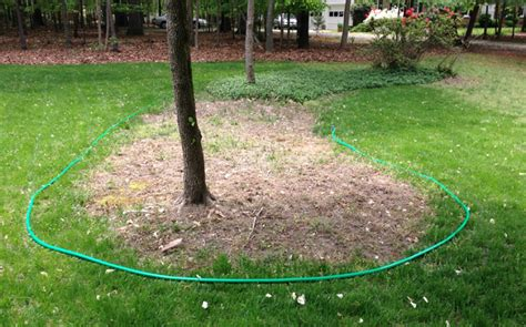 mulch bed edger carving out mulch beds young house love