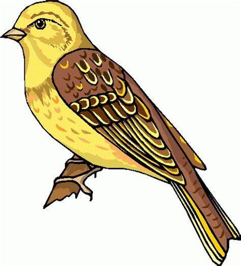 birds clipart bird clipart free clipart images 3 cliparting