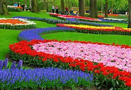 Beautiful Flower Garden Holland