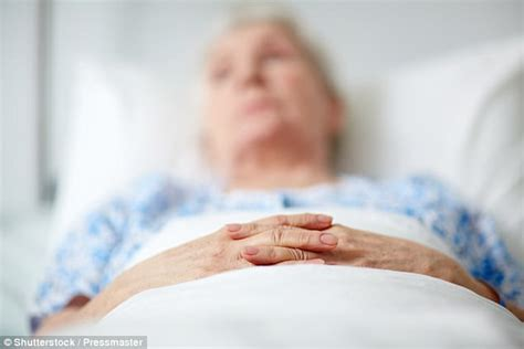 bed written hospice helps terminal patients with virtual technology