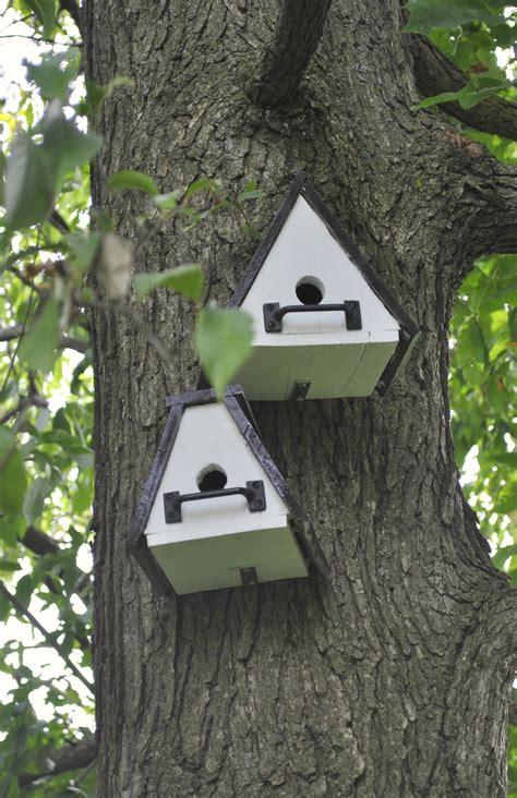 cool bird house plans unique bird houses plans bird cages