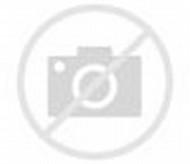Animated Motorcycle