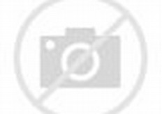 Garden Scenery Coloring Pages