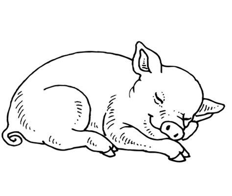 sleeping baby pig coloring supercoloring