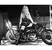 Famous Harley Girls  Yes Women Enjoy Riding Too