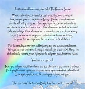 Rainbow bridge rainbow bridge pinterest