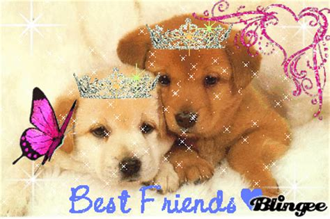 best friend puppies best friend puppies picture 90046682 blingee