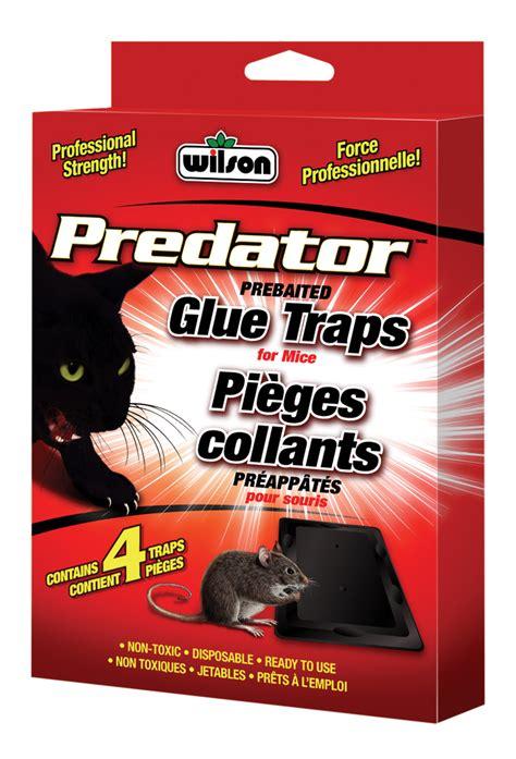 predator mouse glue trap premier tech home  garden