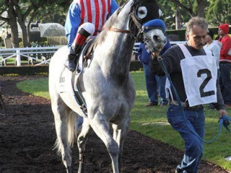 Horse Dies Following Sunday Race at Santa Anita Park