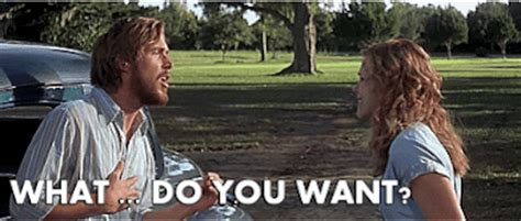 The Notebook Meme - the notebook what do you want quotesta