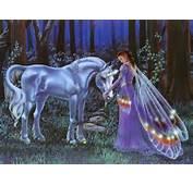 Unicorn And Fairy Wallpaper  Unicorns 6348903 Fanpop