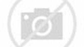 Masha and Bear Cartoon