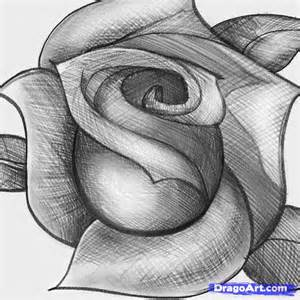How to sketch a rose step by step sketch drawing technique free