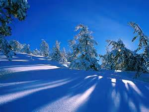 Christmas images winter scene hd wallpaper and background photos