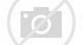 Julia Perez vs Dewi Persik
