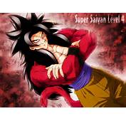Goku Super Saiyan Level 4  Dragon Ball Z Wallpaper 26188410