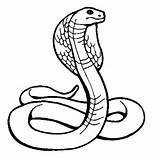Dessins Colorier Serpent Ninjago Graffiti Pictures